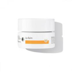 Dr. Hauschka Læbesalve (45 ml)